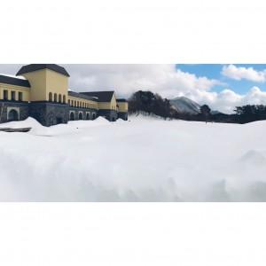 3月13日 雪で埋まる美術館前の池